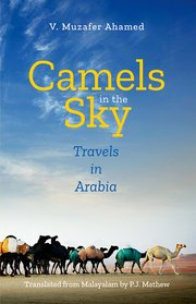 Camels in the Sky